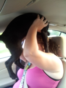 Apparently, Klutch wanted to ride on her Mommy's head!